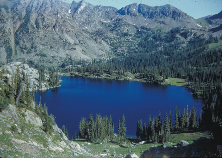 The lake is a royal blue, making the surrounding forests and mountainsides seem drab in comparison.